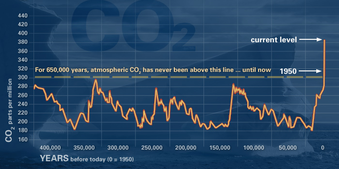 Atmospheric carbon dioxide concentrations have increased drastically in a short amount of time