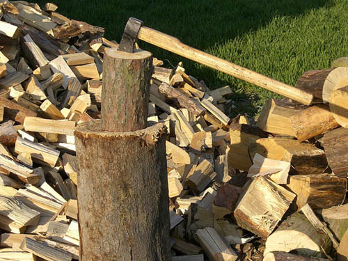 For thousands of years, wood has been the largest biomass energy source