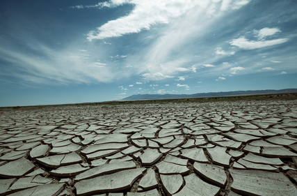 Climate change will have severe impacts on agriculture in many regions of the world