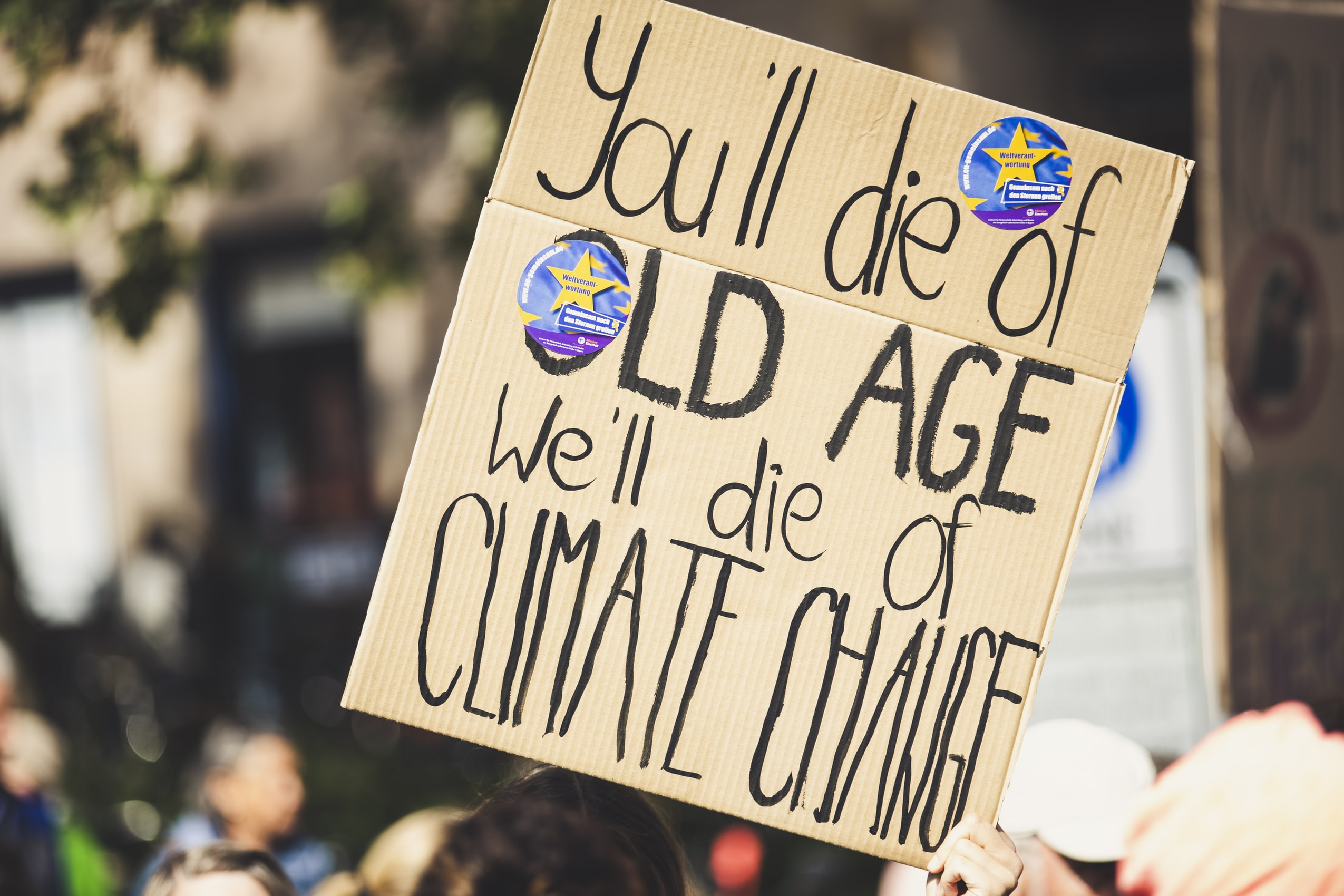Die of Climate Change Sign