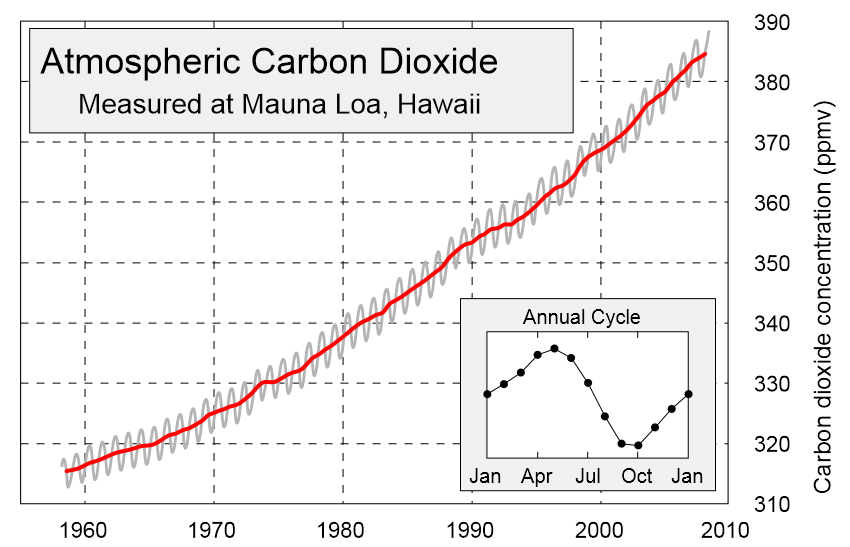 Although carbon concentrations fluctuate between seasons, there is a steady annual increase