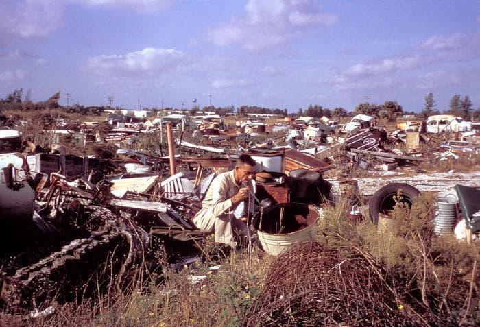 The 1965 Aedes Aegypti eradication program in Miami, Florida
