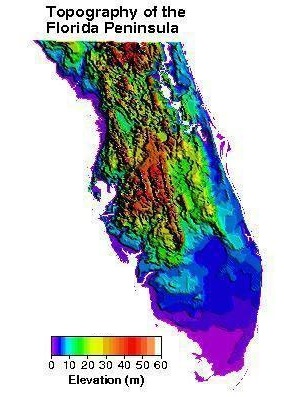 Topography of the Florida Peninsula