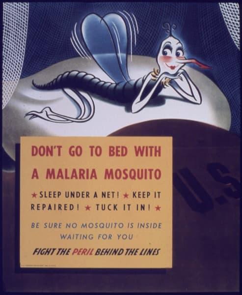 To avoid getting malaria, sleep under a net