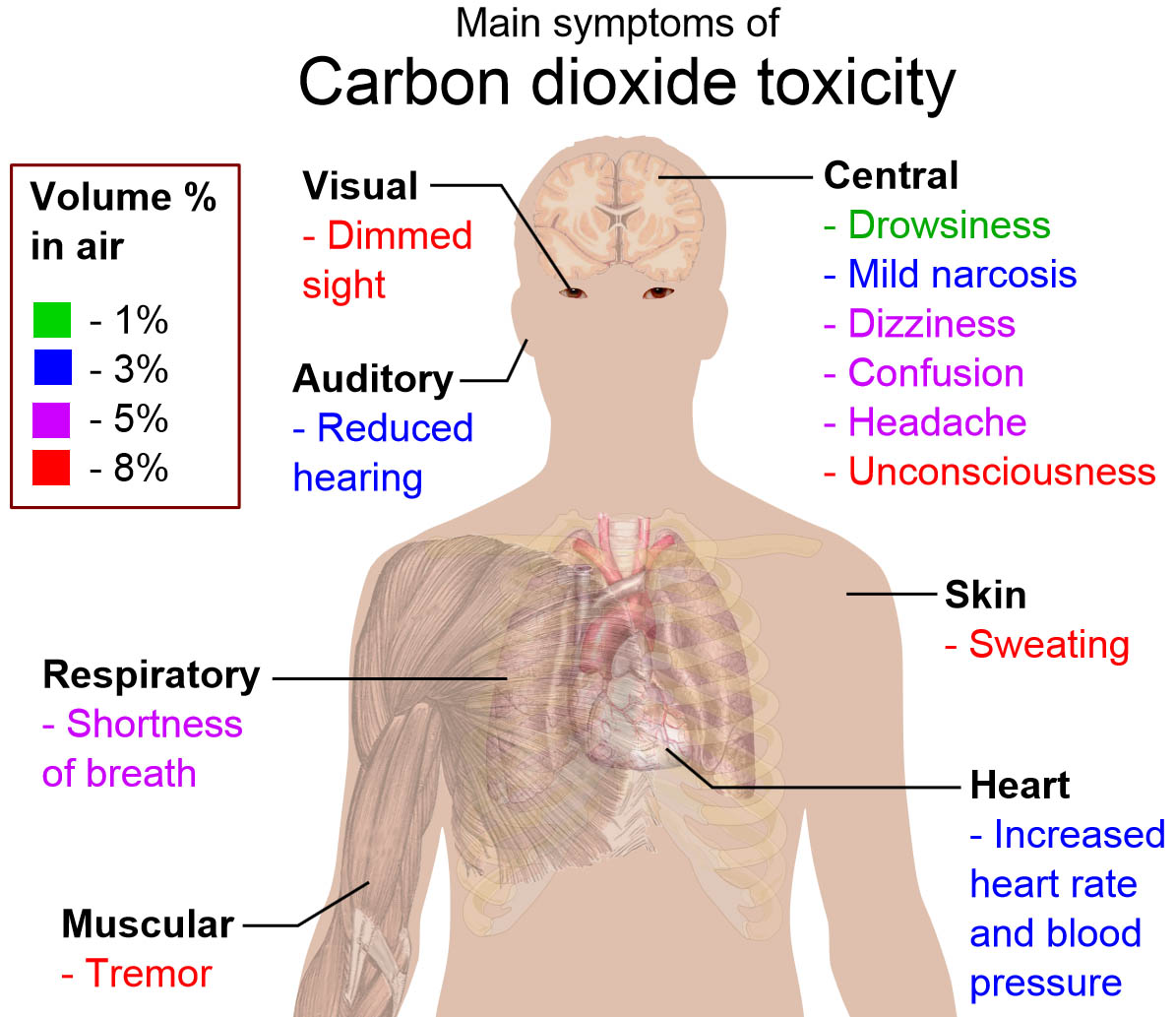 Carbon dioxide toxicity can cause many different symptoms